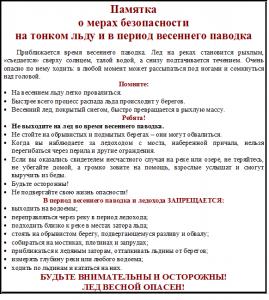 o_merakh_bezopasnosti_na_tonkom_ldu